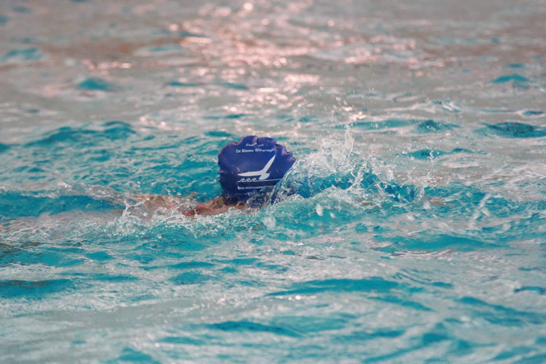 zwemschool De Blauwe Watervogel
